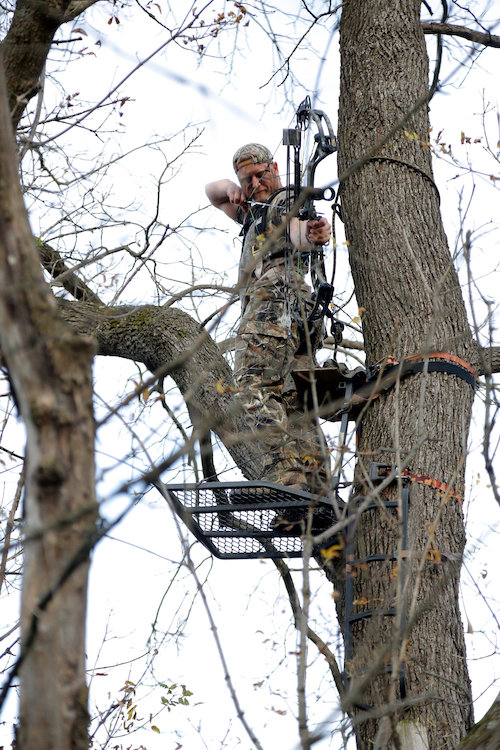 BBow Hunter in a Tree Stand