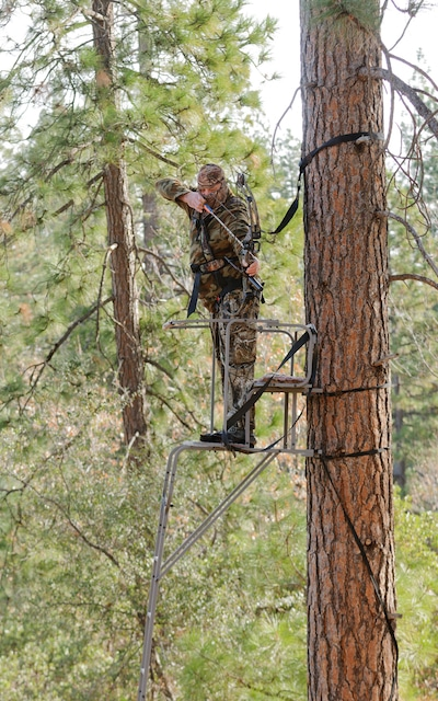 Bowhunter at full draw in a ladder stand