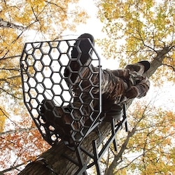 View from below looking at a hang on tree stand