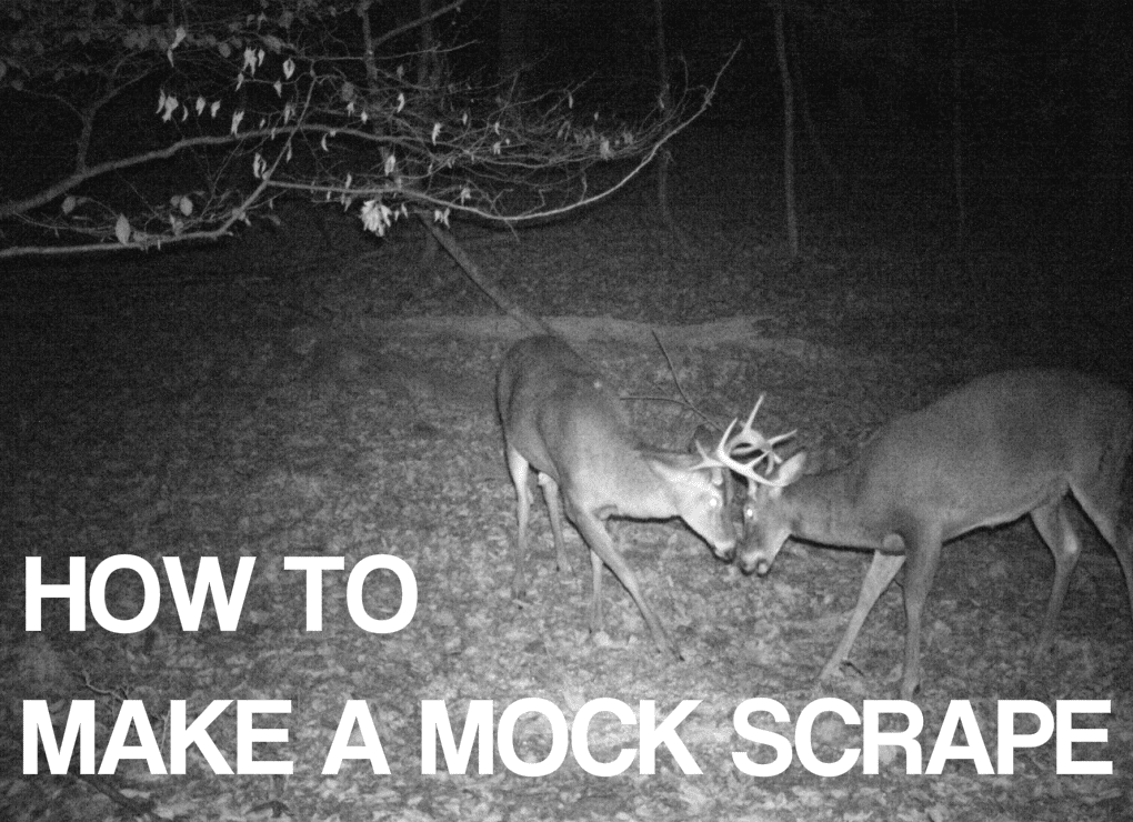 How to Make a Mock Scrape