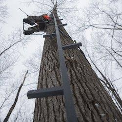 Ladder Style Climbing Sticks