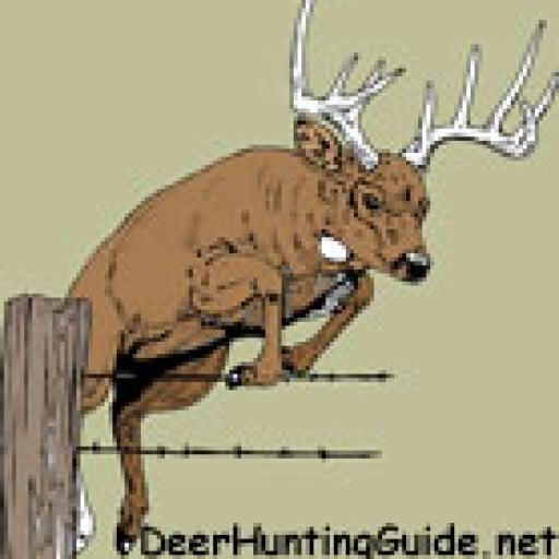 DeerHuntingGuide.net